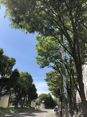 【松坂屋名古屋店】今日もスカッとした青空ですね!