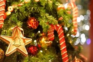 【日本橋髙島屋S.C.店】クリスマスキャンペーン