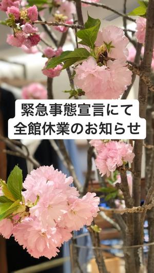 【東京ミッドタウン日比谷店】皆さまに大事なお知らせ